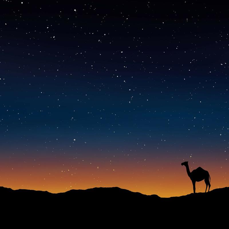サハラ砂漠2