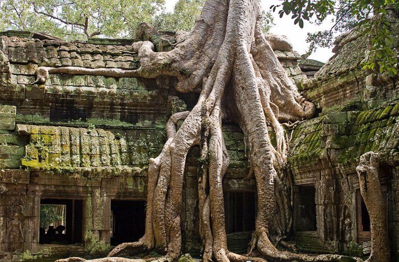 アンコール遺跡、カンボジア2