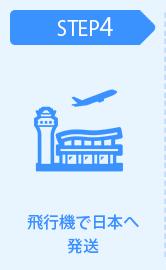 飛行機で日本へ発送